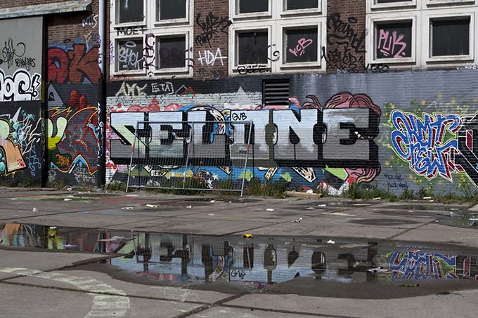 SelOne
