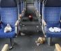 sachschaedendeutschebahn101_v-contentgross
