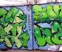 dedicated_rozer_sone_soek_wats