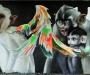 case-von-maclaim-graffiti-an-der-friedensbrc3bccke-in-frankfurt-2