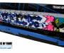 phoca_thumb_l_trains-peint-iser-esp
